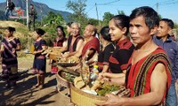 Festival Aza Koonh, Patrimonio Cultural Inmaterial Nacional de Vietnam