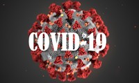 Covid-19, retos de la economía mundial