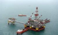 Putin reitera la determinación de solventar actuales problemas petroleros