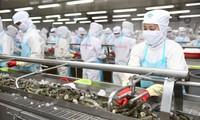 Vietnam por diversificar mercados para desarrollarse y enfrentar pandemia
