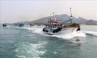 Localidad survietnamita contribuye a esfuerzos por levantar sanciones europeas a la pesca