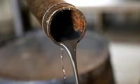 OPEP+ comprometido a reducir extracciones de petróleo