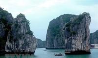 Quang Ninh recibe mayor afluencia de turistas gracias a políticas de estímulo turístico