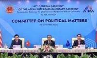AIPA: por la promoción de la paz, la seguridad y el orden regional