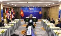 Vietnam contribuye a convertir la Asean en un modelo de cooperación regional contra el convid-19