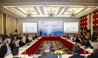 Vietnam comprometido con la protección de los derechos humanos en el contexto del covid-19