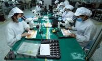 """Una revista británica señala a Vietnam como un """"mercado prometedor"""" de Asia"""