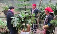 De hierbas tradicionales para bañarse a una marca millonaria