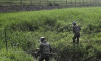 Las dos Coreas comienzan a remover minas en la zona desmilitarizada
