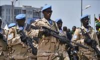 Mueren en un atentado en Mali diez cascos azules de la ONU