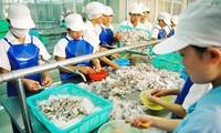 Sector de productos acuáticos de Vietnam por lograr 10 mil millones de dólares de exportación