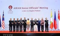 Vietnam contribuirá activamente a los esfuerzos comunes de la Asean, afirma vicecanciller