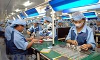 Empresas vietnamitas aprovechan oportunidades del tratado comercial con la Unión Europea