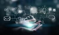 Sector empresarial,  núcleo de la transformación digital