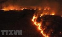 Papa Francisco llama a la cooperación global contra los incendios en el Amazonas