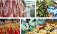 Agricultores vietnamitas ante oportunidades y retos de integración global