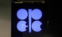OPEP+ reducirá producción del crudo