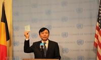 Vietnam inicia su mandato de miembro no permanente del Consejo de Seguridad de la ONU