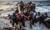 Mueren once migrantes por naufragio de barco en mar turca