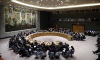 Miembros del Consejo de Seguridad de ONU rechazan plan de Donald Trump sobre Medio Oriente