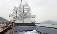 Premier vietnamita aprueba la reanudación de la exportación de arroz
