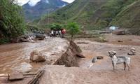 Cruz Roja de Vietnam ofrece asistencia a provincias norteñas afectadas por los desastres naturales