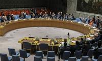 Consejo de Seguridad de la ONU realiza videoconferencia sobre situación en Yemen