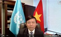 Vietnam participa activamente en la misión de mantenimiento de la paz en África Central