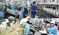 Empresas vietnamitas por desarrollarse en el período posterior al Covid-19