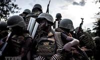 Vietnam llama a solucionar la crisis en la República Democrática del Congo