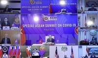 Medio singapurense resalta el papel de Vietnam como presidente de la Asean