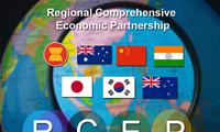 Expertos del Sudeste Asiático alaban la importancia del acuerdo de la RCEP