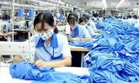 Vietnam y la oportunidad de oro para avanzar con el EVFTA