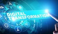 Transformación digital en comercio exterior: dirección inevitable hoy en día