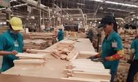 Las exportaciones de madera y muebles vietnamitas crecen en medio del covid-19
