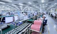 Sector de procesamiento y manufactura atrae más IED en Vietnam