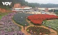 La provincia de Lam Dong estimula la demanda turística