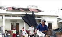 Localidades vietnamitas superan consecuencias de la tormenta Molave