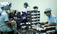 Empresas de Ciudad Ho Chi Minh impulsan las exportaciones en el tiempo pandémico gracias a productos renovados