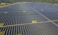 Vietnam entre los tres líderes en transición a energía renovable en Asia- Pacífico