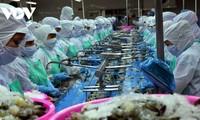 Alaban levantamiento de impuestos antidumping de Estados Unidos a camarón vietnamita