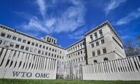Vietnam aprecia el papel central de la OMC