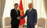 越俄关系:牢固、互信伙伴
