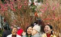 越侨欢欢喜喜回国过大年