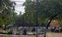 """俄罗斯和日本协助越南克服台风""""达维""""影响"""