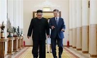 韩国总统文在寅呼吁韩朝彻底消除70年来的敌对状况