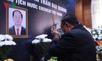 各国、各政党领导人及旅外越南人协会和组织悼念陈大光主席