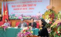 发挥越南和平与发展基金活动的效果