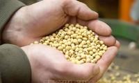 中国将对696种美国商品免于实施加征报复性关税