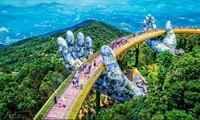 2020年前两个月,越南接待国际游客创4年来的最低增幅